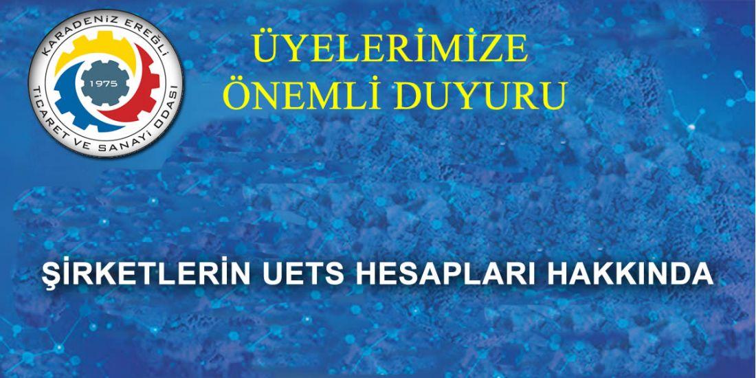 ŞİRKETLERİN UETS HESAPLARI HAKKINDA